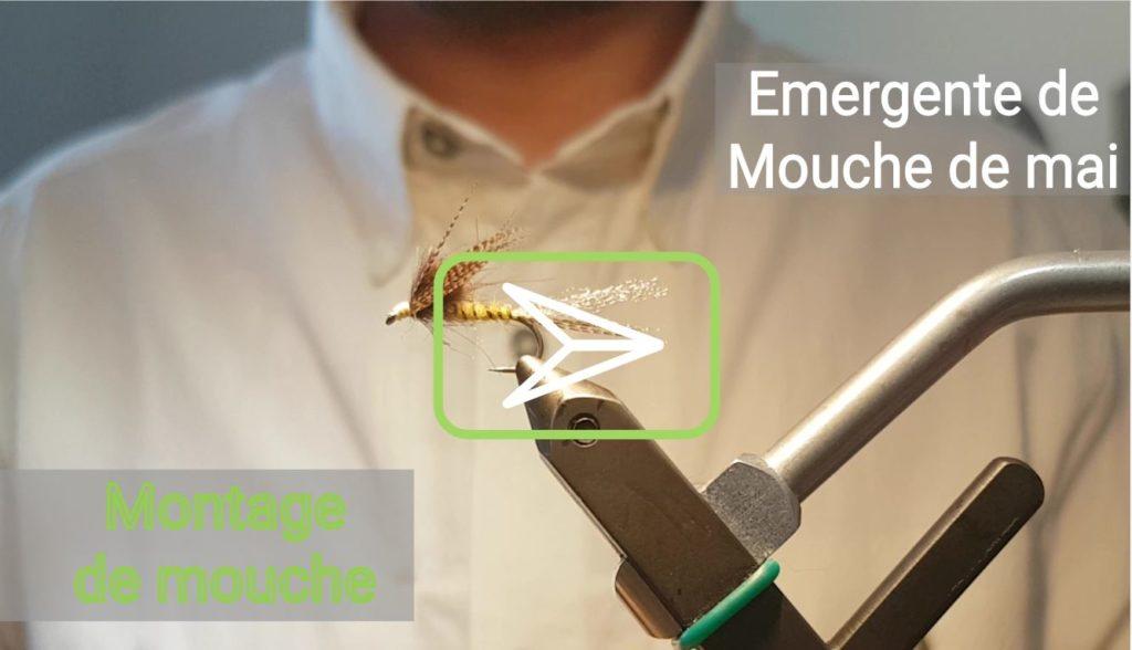 Vidéo de montage : émergente de mouche de mai