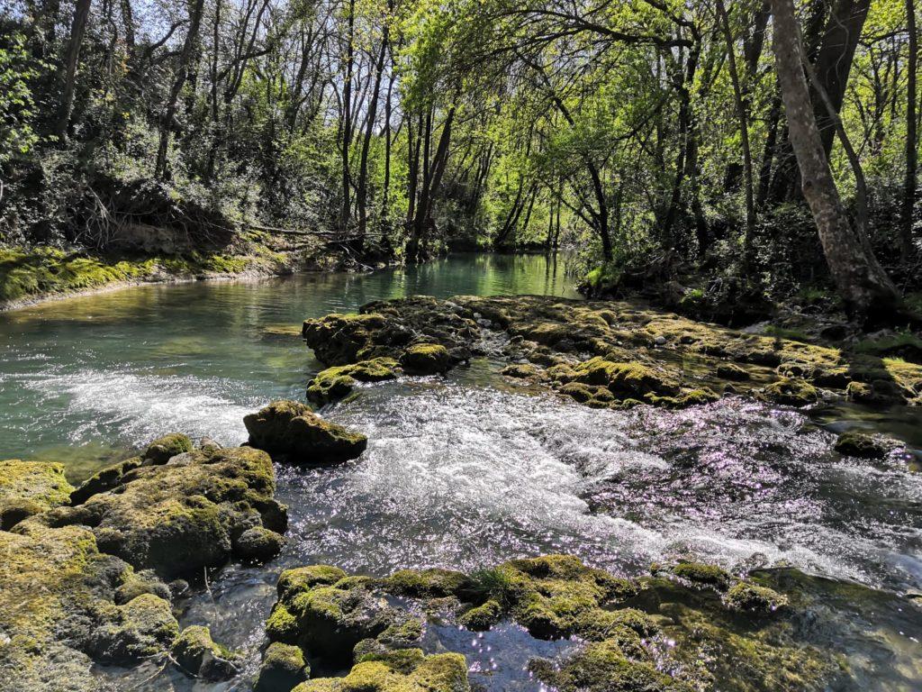 Le Lez, fleuve méditerranéen abritant une population de chabot endémique retranchée sur sa partie amont.