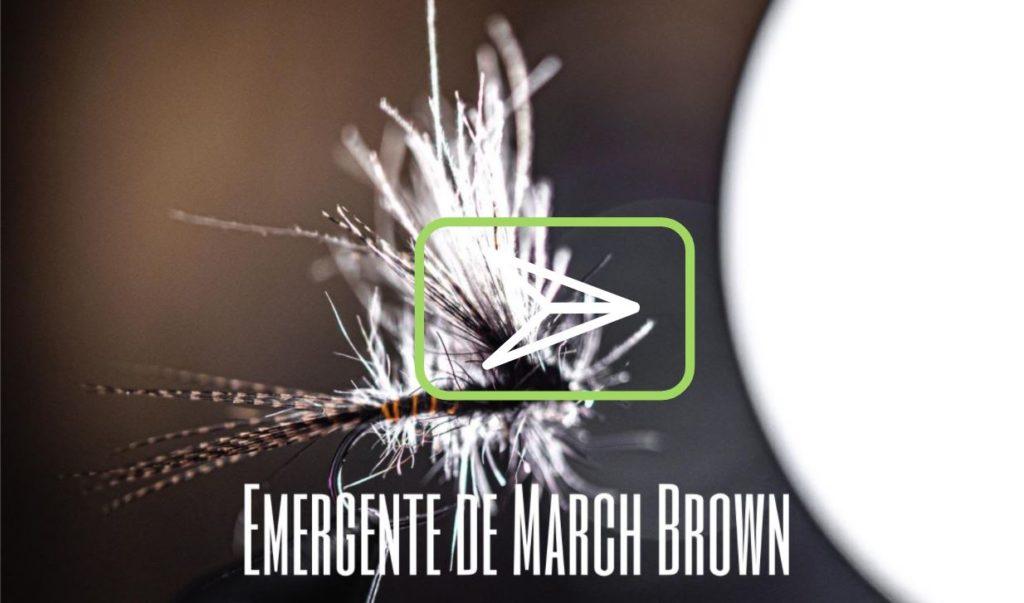 Vidéo de montage : l'émergente de March Brown