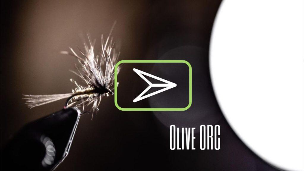 Vidéo de montage de mouche : l'Olive ORC